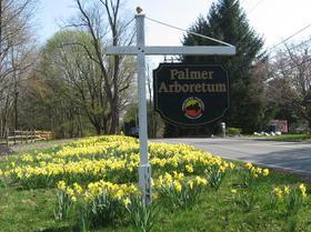 Palmer Arboretum
